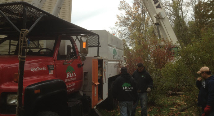 Ryan Tree & Landscaping | Equipment Pic 10 - Trucks