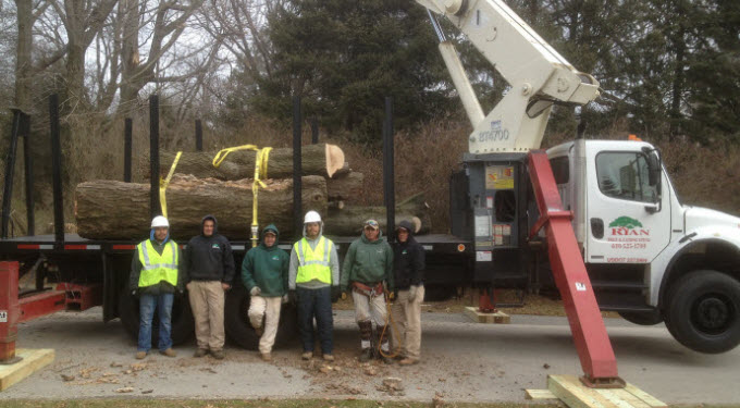 Ryan Tree & Landscaping | Equipment Pic 2 - Crane & Crew