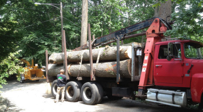 Ryan Tree & Landscaping | Equipment Pic 4 - Truck & Logs