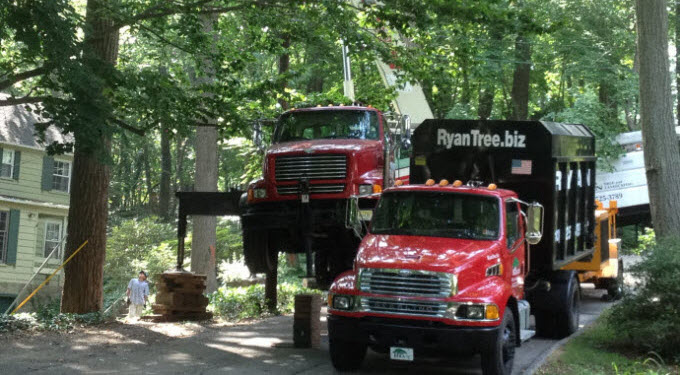 Ryan Tree & Landscaping | Equipment Pic 5 - Truck & Crane
