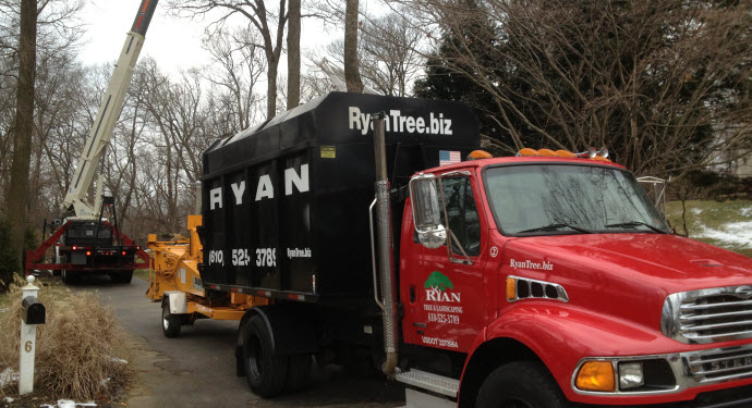 Ryan Tree & Landscaping | Equipment Pic 6 - Trucks