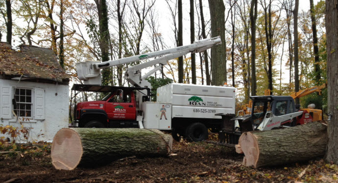Ryan Tree & Landscaping | Equipment Pic 9 - Trucks